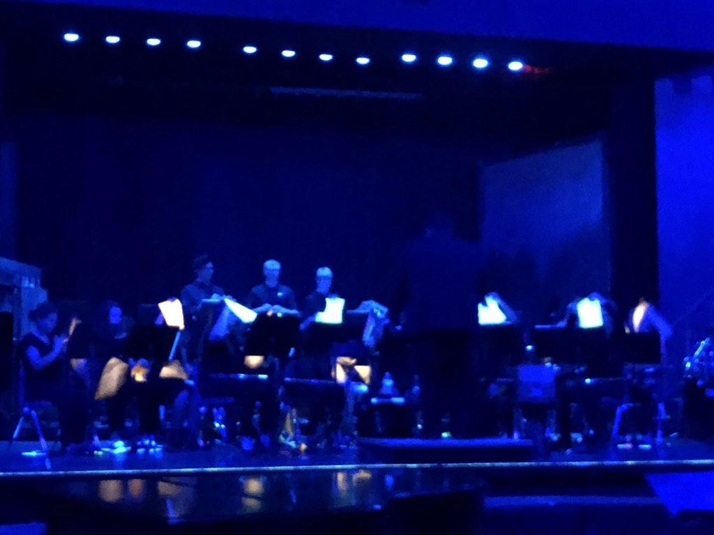 High school band under the black lights