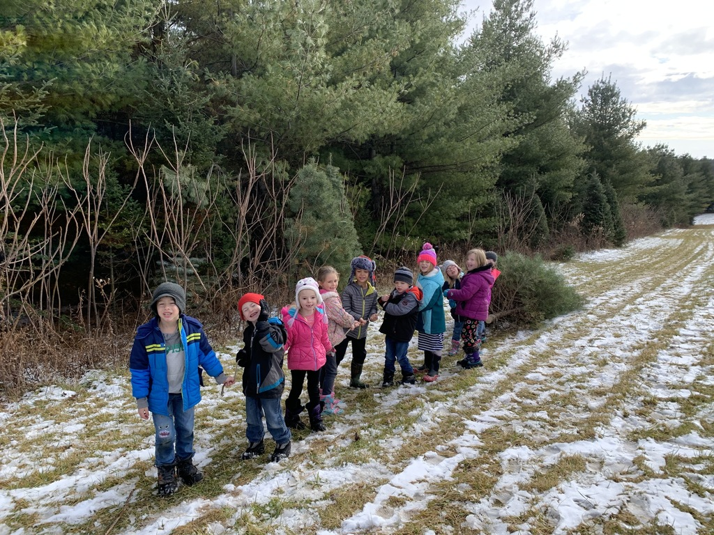 Mrs. Seiser's class worked together to pull their tree out of the woods.